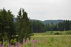 mooi-uitzicht-sauerland